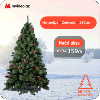 kupit-Елка Royal Christmas COLORADO PP/PVC PREMIUM + CONES - HINGED HOLLAND (1.80 metr) (816180)-v-baku-v-azerbaycane