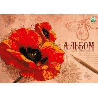 kupit-альбом Academy 20 листов 7967-v-baku-v-azerbaycane