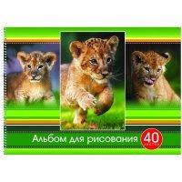 kupit-aльбом для рисования Hatber Тигрята A4 40 листов 2-v-baku-v-azerbaycane