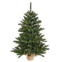 kupit-Елка Royal Christmas dakota minitree (75 sm)-v-baku-v-azerbaycane