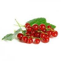 kupit-Смородина красная 125 гр-v-baku-v-azerbaycane