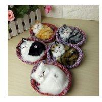 kupit-Игрушечные мяукающие котята 29 см-v-baku-v-azerbaycane